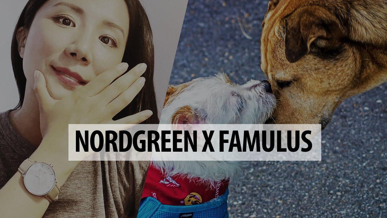 이번에는 유기동물보호소 자립 후원! ⏱ 덴마크의 착한 시계, 노드그린