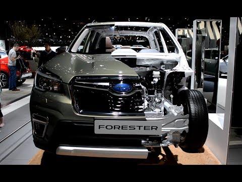 2019 New Subaru Forester Exterior and Interior