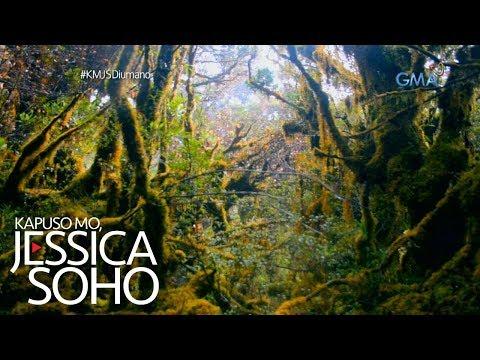 Kapuso Mo, Jessica Soho: Nakamamanghang 'mossy forest' sa Compostela Valley