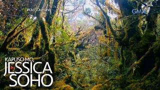 Kapuso Mo, Jessica Soho: Nakamamanghang \'mossy forest\' sa Compostela Valley