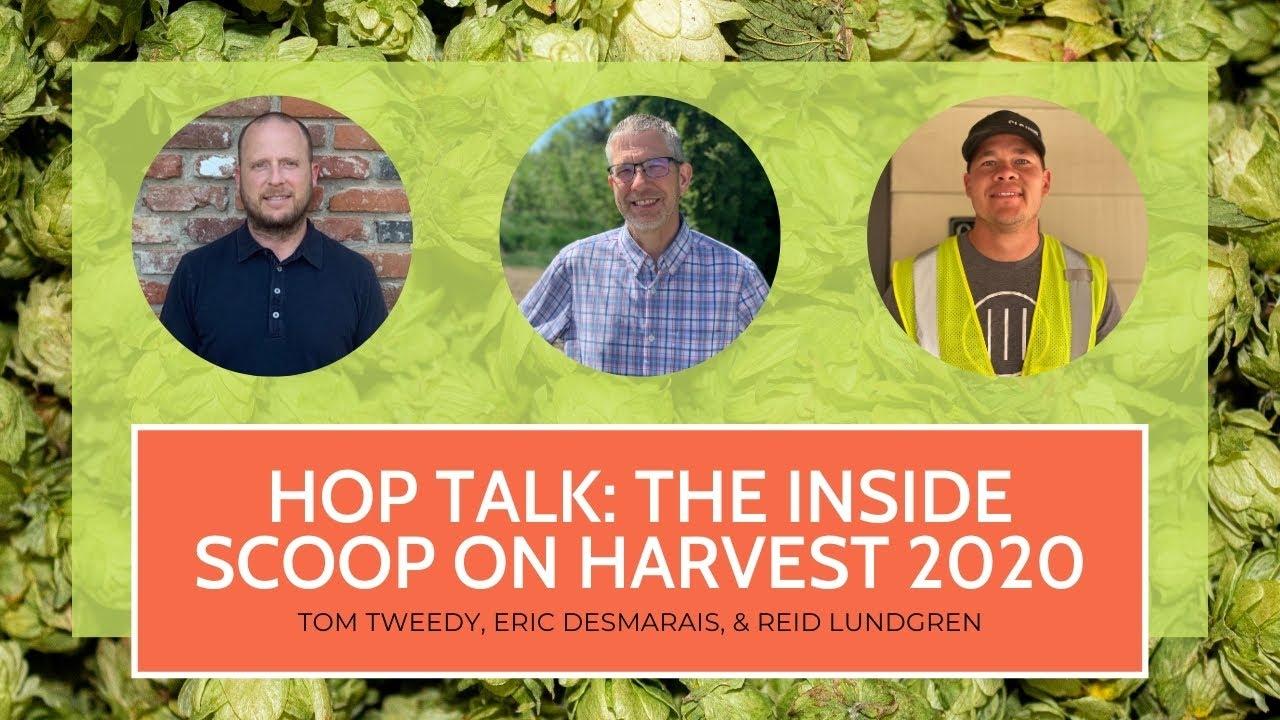 Hop Talk: Inside Scoop on Harvest 2020