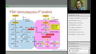 Kontrollü Overyan Stimülasyon'da Prematür Progesteron Yükselmesi