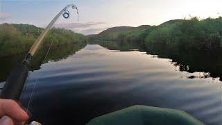 Рыбалка В этих красивейших местах гнутся КРАКОДИЛЫ Кинули бутылки на разведку