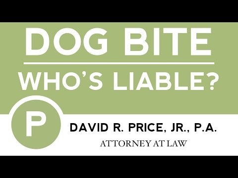 Dog Bite Lawyer Greenville SC | David R. Price, Jr., P.A. | Greenville Dog Bite Attorney