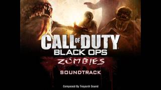Call Of Duty: Black Ops: Zombie