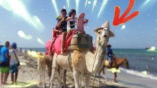 ON FAIT DU CHAMEAU EN TUNISIE ! 😱 thumbnail