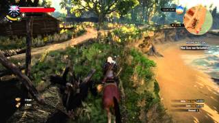The Witcher 3 : MIA - Find Dune Vildenvert Quest