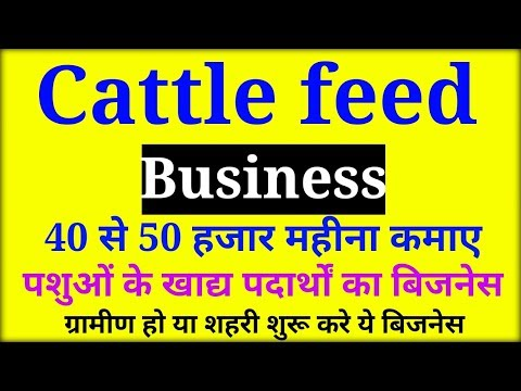 Home based business ideas | cattle feed business | Small Business ideas