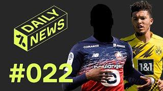 BVB: OSC Lille-Angreifer als Ersatz bei Sancho-Transfer? FC Bayern will Norwich-Verteidiger!