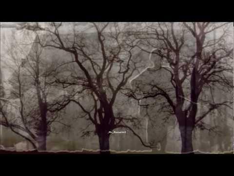 Bobby Vinton - Mr. Lonely (HQ) + lyrics