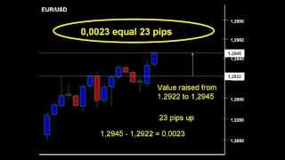 Forex pip definition EUR/USD