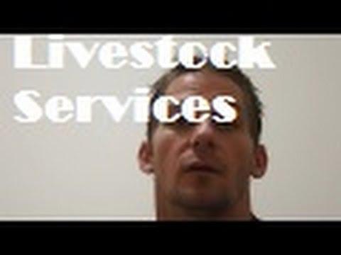 Free Livestock Feed