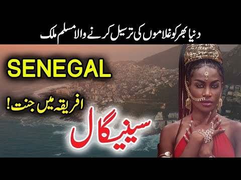 Travel To Senegal in Urdu/Hindi | History Of Senegal Documentary | Flying News Urdu