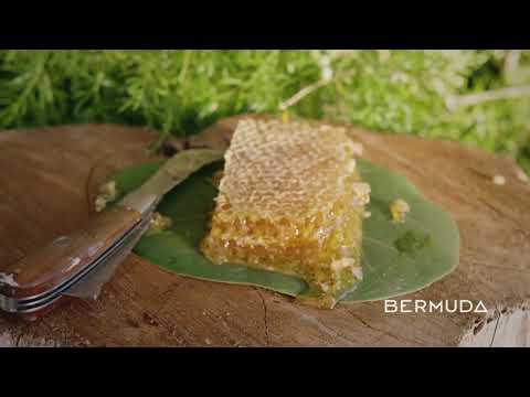 BTA Harvest Heroes: Spencer Field Beekeeping with Passion Fields, Jan 2021