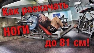 Тренировка ног!!! Методика Андрея Прокофьева!!!