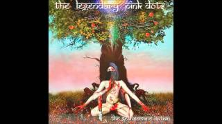 The Legendary Pink Dots - Esher Everywhere