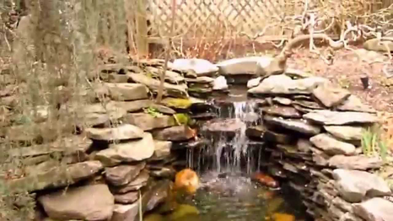 backyard pond with waterfall and gold fish youtube