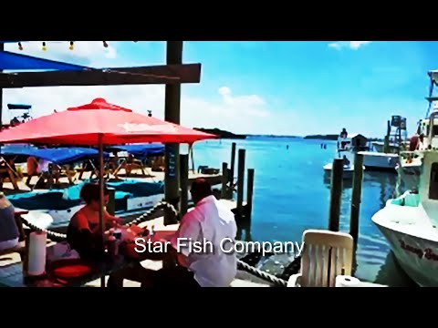 Star Fish Company: Best Seafood Restaurant In Sarasota-Bradenton?