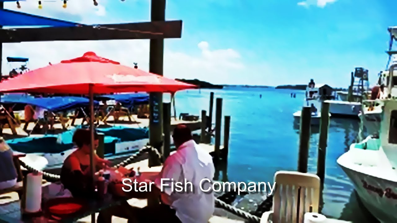 Star fish company best seafood restaurant in sarasota for Sarasota fish restaurants