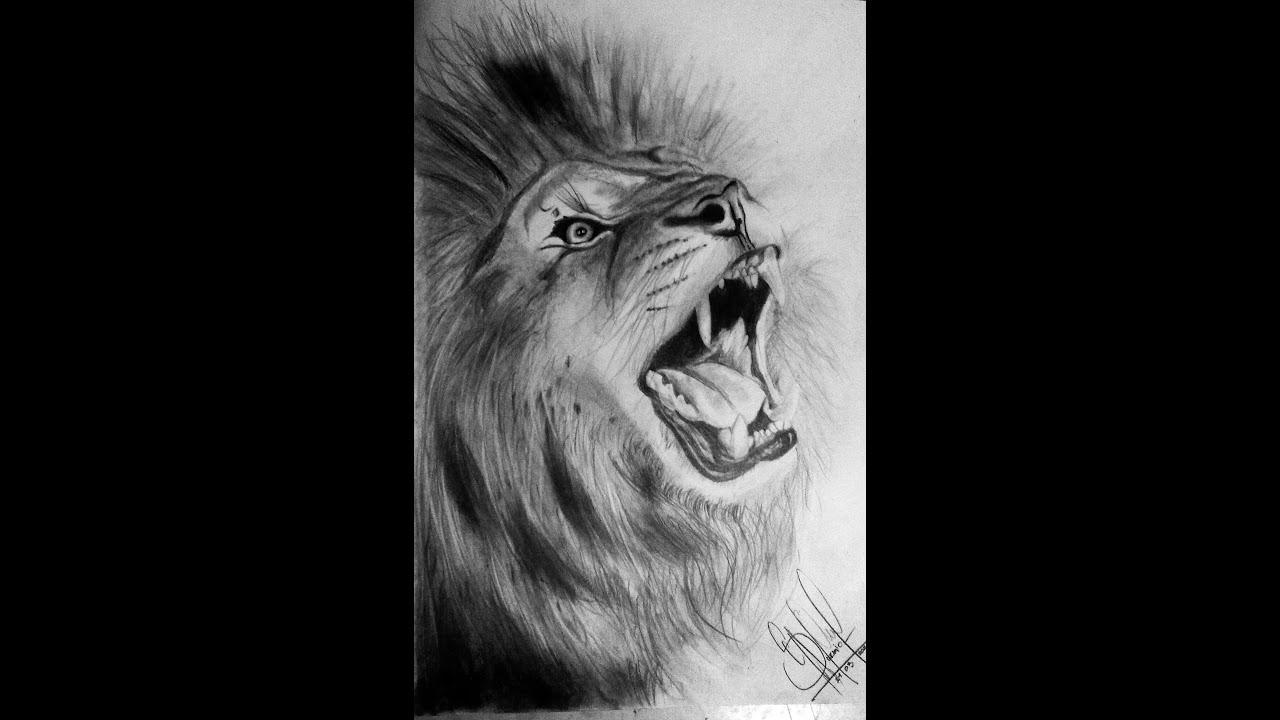 Dibujo Realista león a Lápiz - YouTube