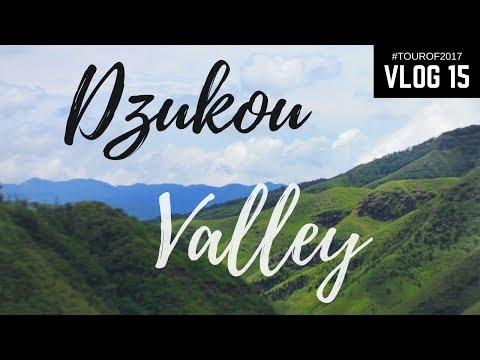 Trek to Dzukou Valley | Vlog 15 | #Tourof2017 | North-East India
