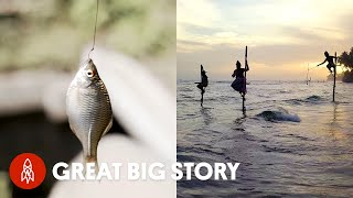 5 Creative Ways People (and Birds) Fish Around the World
