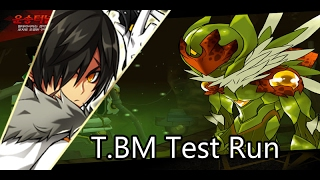 [Elsword NA] T.BM 4 X Solo Run Active skill test