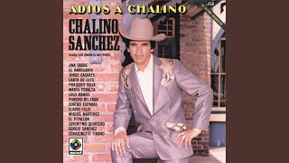 Gambar cover Eladio Felix