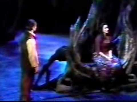 Into The Woods (2002 Revival) [Please Read Description]