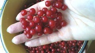 видео Вишневый сок: то, в чем нуждается организм