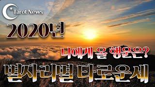 [2020년]별자리별 타로운세. 나오게 올 변화와 행운은? 해밀 이주원 교수의 타로. 타롯뉴스&해밀스…