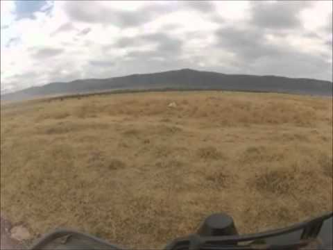 Safari to Lake Manyara & Ngorongoro Crater