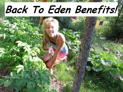 Back To Eden Organic Gardening: Gardening OUTSIDE THE BOX!