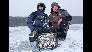 Зимняя Леска Salmo - Леска Для Зимней Рыбалки