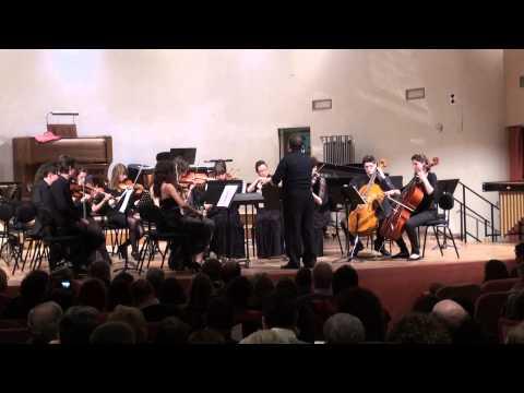 Orchestra del Liceo Musicale Dante esegue Mozart