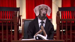 Footage from John Oliver's Last Week Tonight.