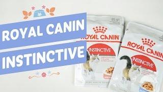Роял Канин Инстинктив - влажный корм для взрослых кошек и котят Royal Canin Instinctive консервы