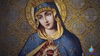 Nossa Senhora das Dores   15/09 - Apresentação : Betinho
