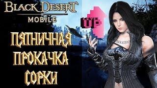 Black Desert Mobile - Пятничная Прокачка Сорки