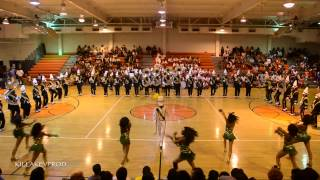 Rosa Fort High School Marching Band - Floor Show - 2015