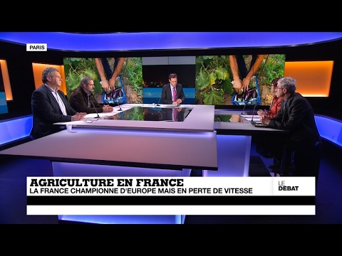 Agriculture : la France championne d'Europe, mais en perte de vitesse (partie 2)