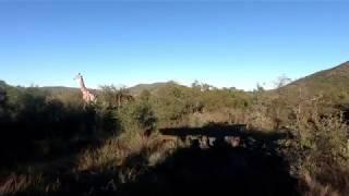 Kwa Maritane - Pilanesberg