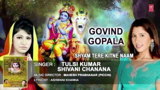 GOVIND GOPALA GOVIND GOPALA KRISHNA BHAJAN BY TULSI KUMAR,SHIVANI CHANANA I AUDIO SONG I ART TRACK thumbnail