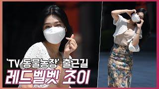 레드벨벳 조이(JOY),'보기만 해도 행복해지는 비타민' [O! STAR]