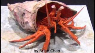 Top 10 Hardest Origami