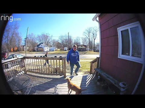 Son Sends Funny Messages to Mom & Dog Escapes, Doesn't Go Far -- Thanks to Ring