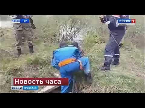 Следком закрыл резонансное дело о гибели девочки в Белово
