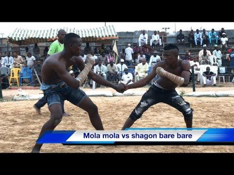 Download Damben kano na yau laraba 16/10/2019,mola mola da shagon barebare sun kece raini
