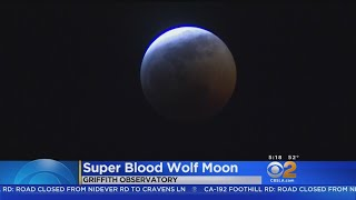 Stargazers Pack Griffith Observatory To See Super Blood Wolf Moon
