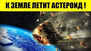 Если не коронавирус, то астероид. Что произойдёт с нами в 2020?